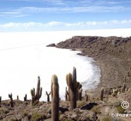 5. El Salar de Uyuni, como se estima, contiene 10 mil millones de toneladas de sal, de la cual 25,000 toneladas son extraídas cada año