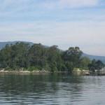 La más grande: Isla de San Simón. Se hace su hueco entre los ríos San Simón e Iténez, en el departamento del Beni y tiene una superficie de 412,30 kilómetros cuadrados, siendo una de las más grandes de Bolivia